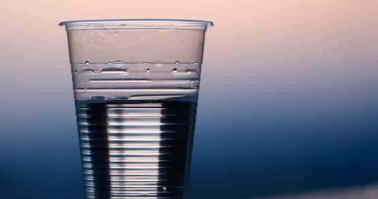 うさぎが1日に飲む水の量は?
